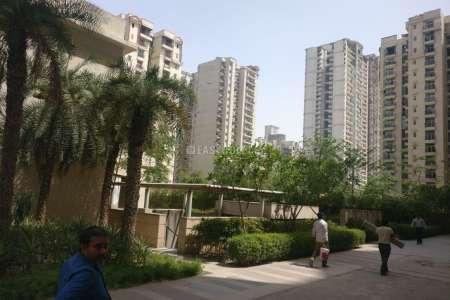 1 BHK Apartment For Rent In Sector 76